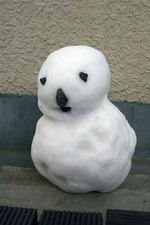 20060123-snow