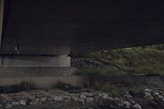 20120602hotaru1